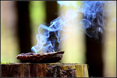 DSC_0031 rauchschale-schamanenfeuer-web